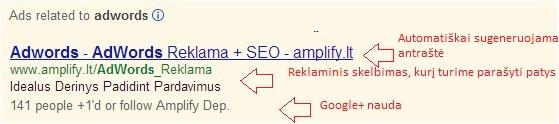 dinamine google zinute